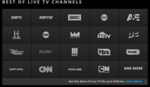 Stream TV Networks Online