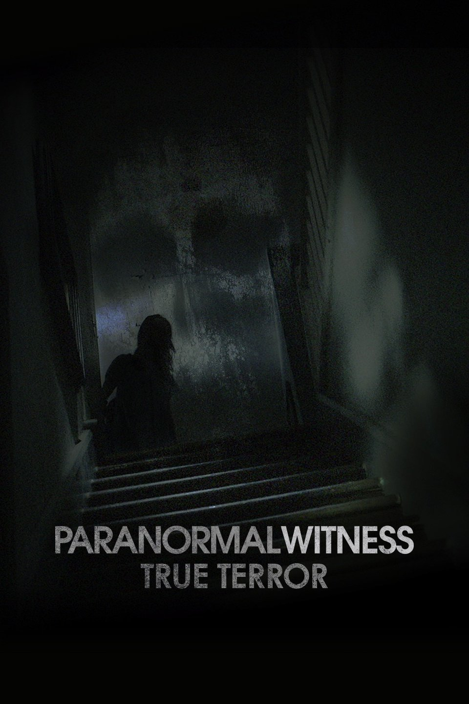 watch-paranormal-witness-online