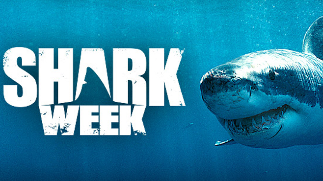 Watch Shark Week Online & Streaming for Free